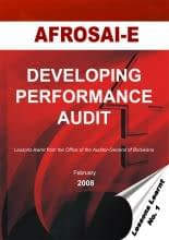 developing_performance_audit