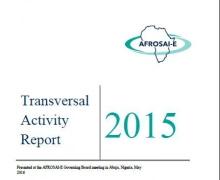 Transversal Activity Activity Report 2015
